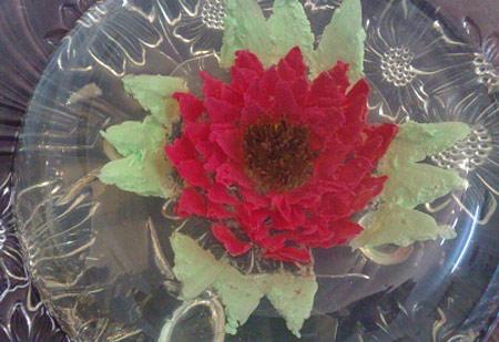 درست کردن ژله تزریقی،آموزش تصویری ژله تزریقی،ژله آلوورا،ژله تزریقی به شکل گل،آشپزی و تغذیه,تهیه ژله تزریقی