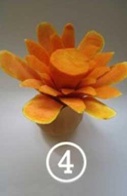 گل کدو حلوایی
