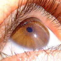 فال چشم