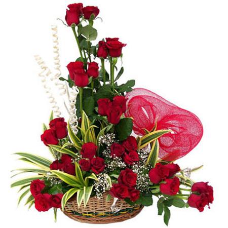 سبد گل,گالری عکس سبد گل,سبد گل آنتوریوم