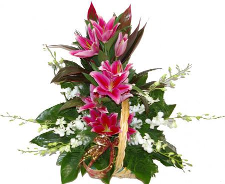 سبد گل,عکس انواع سبد گل,سبد گل تبریک عید تولد